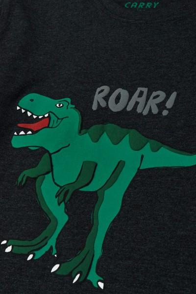 Melanżowa koszulka z dinozaurem