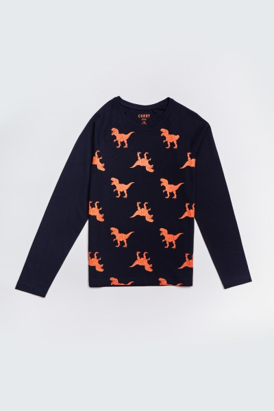 Koszulka w dinozaury